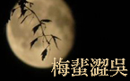 月亮惹哭了……