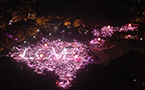 28,000 attend Pink Dot rally in Singapore