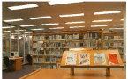 人权组织要求香港图书馆重新放出LGBT主题书籍